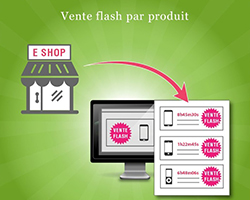 vente flash privee